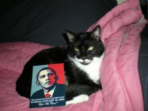 """About that bailout ... can you send more Meow Mix?"""