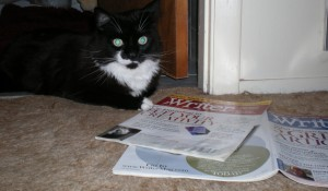 Boomer takes his downtime to catch up on copies of the Writer.
