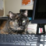 Coco at the keyboard ... I think she secretly yearns to be a writer.